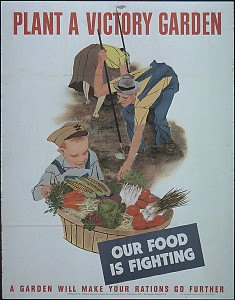 Plant A Victory Garden. Our Food Is Fighting, 1941-1945. From the Records of the Office of Government Reports. National Archives Identifier: 513818